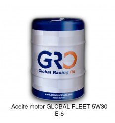 Aceite motor GLOBAL FLEET 5W30 E-6