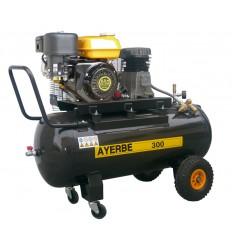 Moto Compresor de aire AY-300-KT